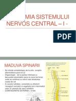 ANATOMIA SISTEMULUI NERVOS CENTRAL