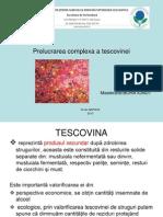 Prelucrarea Complexa a Tescovinei