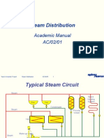 Steam Distribution system