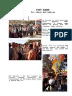 FACT SHEET on 2010 - 2013 DPM Activities.pdf