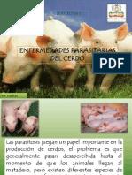 Enfermedades Parasitarias de Los Cerdos