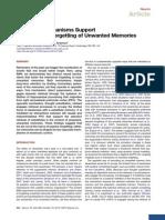 Mecanismos de esquecimento
