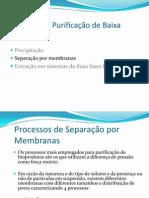 Purificacao de Produtos Biotecnologicos-3