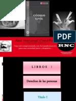código Civil peruano, DERECHOS DE LA PERSONA