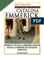 Tomo 05 - Desde el fin de la primera Pascua hasta la prisión de San Juan Bautista - Beata Ana Catalina Emmerick - Visiones y Revelaciones