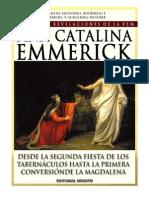 Tomo 06 - Desde la segunda fiesta de los tabernáculos hasta la primera conversión de la Magdalena - Beata Ana Catalina Emmerick - Visiones y Revelaciones