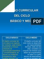 2 DiseÑo Curricular bÁsico Del Ciclo Medio