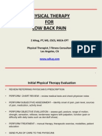 701aPhysical Therapy for Low Back Pain-Z Altug PT MS