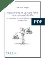 Mecanismos de Justicia Penal Internacional