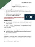 Assessment Handout 2 SBD2013 201211.docx