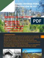 INFRAESTRUCTURA INTERNA PARA LA COMERCIALIZACION DE H.C