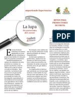 Panorama del Sector Fruticola en Colombia