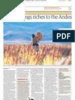 """Quinoa brings riches to the Andes. Por Dan Collyns en """"The Guardian"""""""
