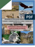Taller de Educación Ambiental-Conservación de Rhea pennata