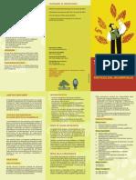 Tríptico Maestría Estudios Críticos del Desarrollo CIDES UMSA 2013