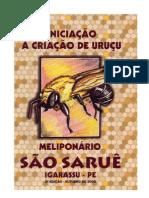 CRIACAO ABELHA URUCU