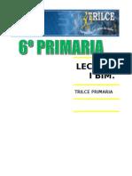 LECTURA PRIMER BIEMSTRE