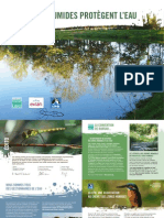 Les zones humides protègent l'eau