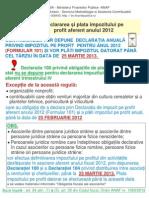 inpozit profit 2012