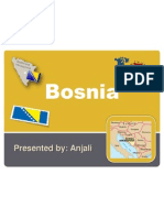 bosnia-herzegovina power point - for world issues cpt project 15 slides attempt version