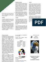 Proyecto FUNDAMENTOS