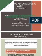 GRUPOS DE ATENCION PRIORITARIA, RESEÑA HISTORICA DE LAS CONSTITUCIONES.