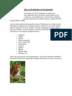 Animales en Extincion en Guatemala