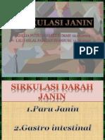 SIRKULASI JANIN