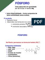 fosforo no solo