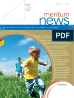 Meritum Newsletter Edition 1 2013