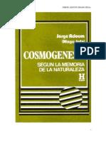 Adoum Jorge Mago Jefa Cosmogenesis