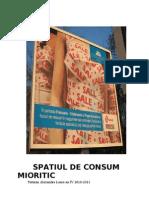 ORAȘUL CA SPATIU DE CONSUM COLECTIV