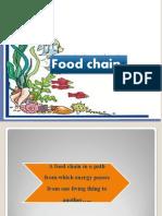 foodchain nx