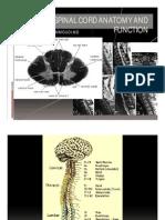 reflexes.pdf