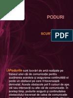 PODURI -SCURT ISTORIC