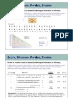 Bioinfo - BLAST_scores.pdf