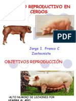 manejo reproductivo porcino