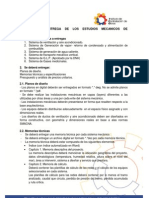 Formato de entrega de estudios mecánicos
