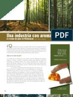 Una Industria Con Aroma a Bosque 05
