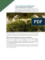 La ventilación en el cultivo de la Marihuana