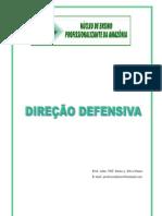 APOSTILA NEPAM - DIREÇÃO DEFENSIVA nº02x