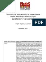 DIAGNÓSTICO DEL SINDICATO DE VENDEDORES DE DIARIOS REVISTAS Y LOTERÍAS DE TRUJILLO