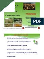 Obtención de Bio-etanol