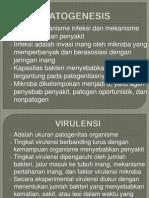 patogenesis dan imunitas