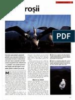 Albatros i i