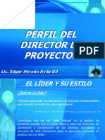 Perfil Director de Proyectos