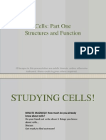 Cell Structure and Function 7.1