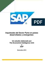 Inquietudes del sector Pyme en países en desarrollo y emergentes.