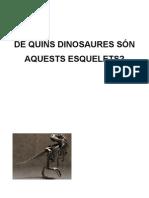 Els dinosaures i els seus esquelets