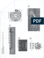 Survey of Echo Park symbols